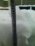 本日残雪により月例会中止